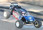 Associated Sweeps Reedy Truck Race