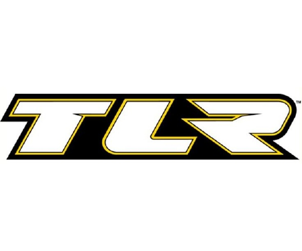 2011 Team Losi Racing Winter Series Flyer