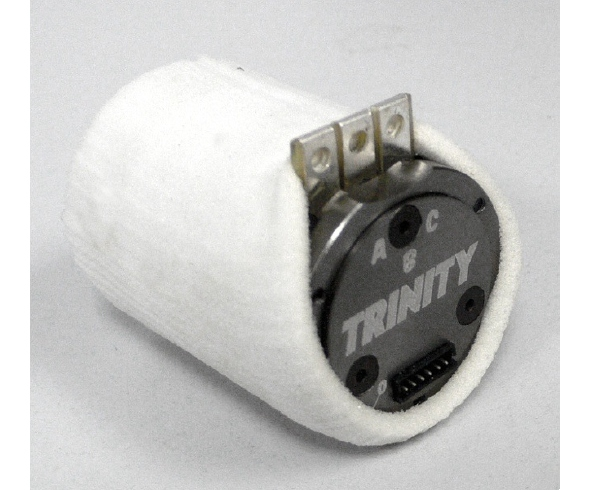 Team Epic Dirt Diapers for Brushless Motors