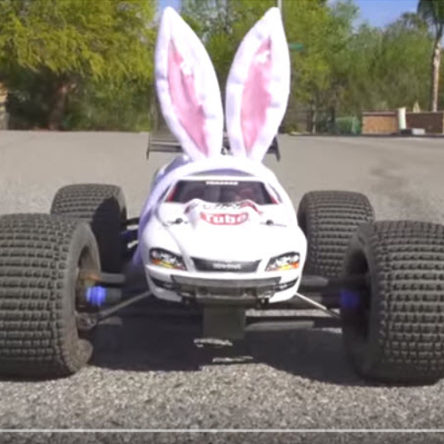 Here Comes Peter Cottontail, Dragged Along An Off-Road Trail