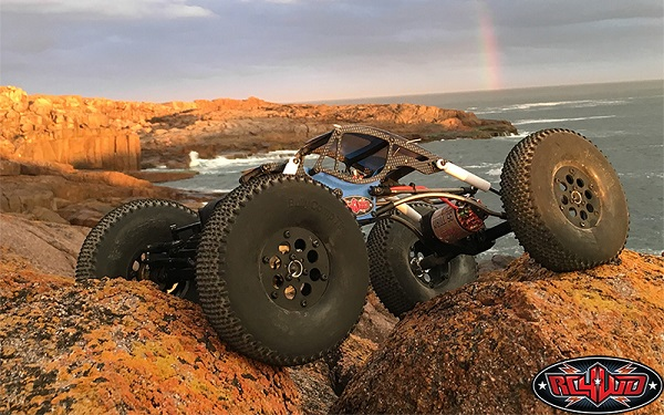 RC4WD RTR Bully II MOA Competition Crawler (1)