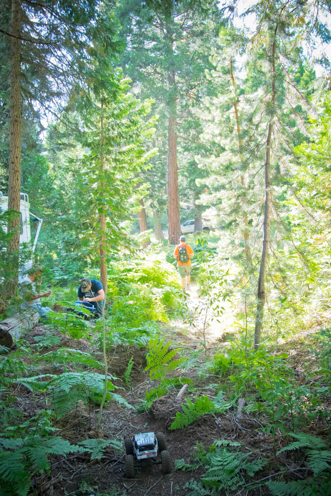 Pristine Tahoe forest was setting for the 2016 Axialfest.