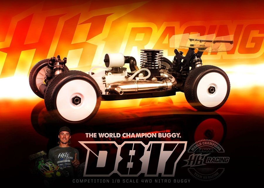 HB Racing D817 1_8 4wd Off-Road Nitro Buggy (3)