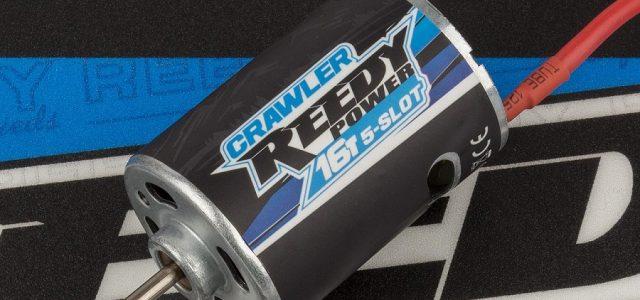 Reedy Crawler 16T 5-Slot Brushed Motor