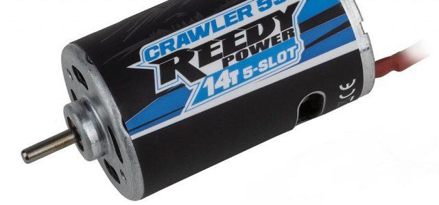 Reedy Crawler 550 14T 5-Slot Brushed Motor