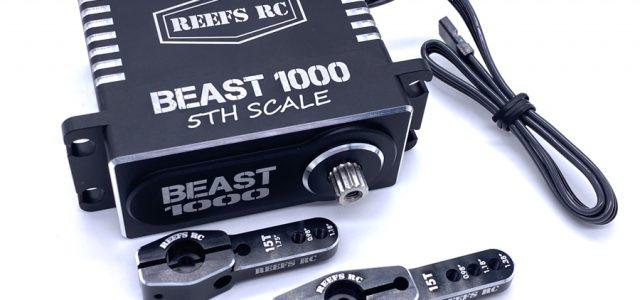 Reef's RC Beast 1000 5th Scale Servo