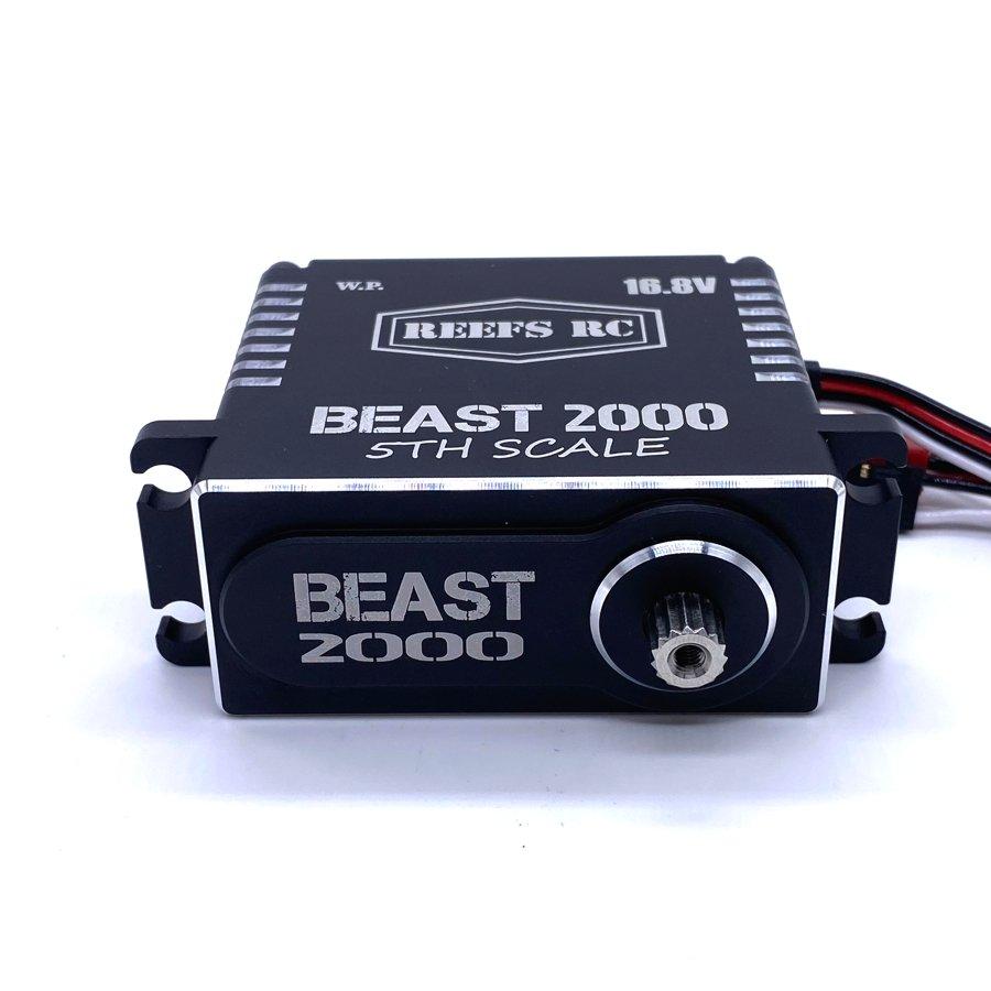 Reef's RC Beast 2000 5th Scale Servo 16.8v